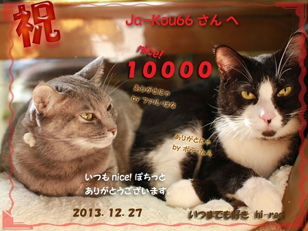 10000nice!thanks_s.jpg