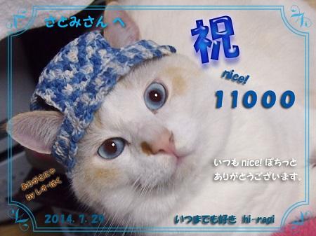 11000nice!thanks_s.jpg