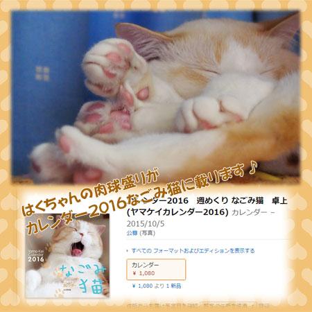 2016karenada_nagmineko.jpg