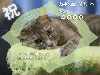 4000nice!thanks_Ja-Kou66san_s.jpg