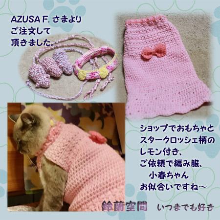 AZUSA_F_sama_omotya_sutakuroyururemon_amifuku.jpg