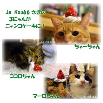 Ja-Kou66sama_nyankokeki.jpg