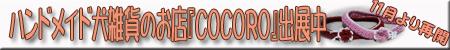 COCORO 11月より再開♪