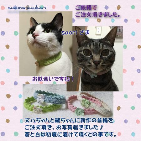 20160322_2nya_yurukubiwa.jpg