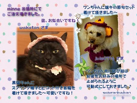 20170419_2nyan_tangoset_supubou_pikokuiwa.jpg