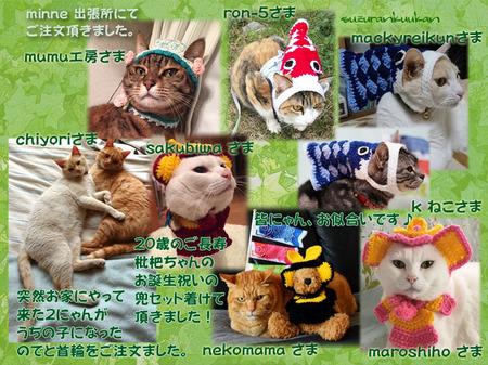 20180509_10nyan_asamimibou_pikottokubiwa_yuruhanakubiwa_kabutoset_kabutoset2_kaburikoinobori.jpg