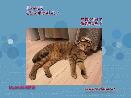 20190815_houkokugazou_1nyan.jpg