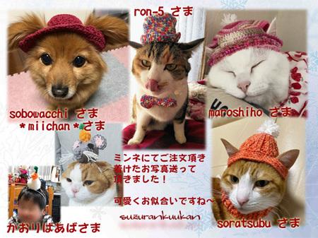 20191127_houkokugazou_4nya_1wan_1man.jpg