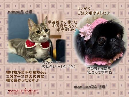 20201118_houkokugazou_1nyan_1wan.jpg