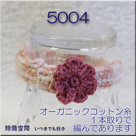 5004.jpg