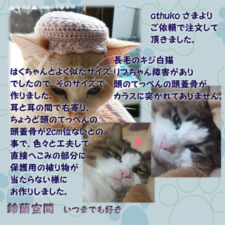 athumi_sama_ributyan_hogoyouherumetto.jpg