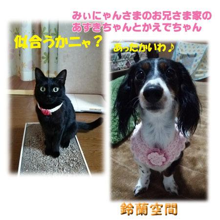 minyansama_oniisamakenoazukityantokaedetyan.jpg