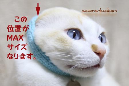 yurukubiwa_MAX_iti.jpg